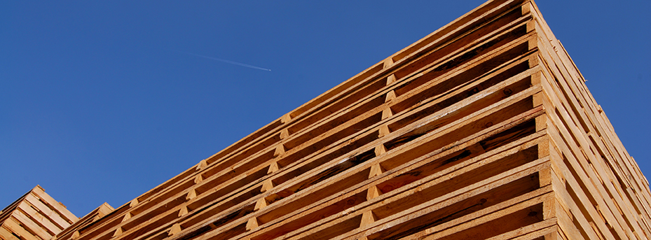 Wooden pallets stacked outside in a yard